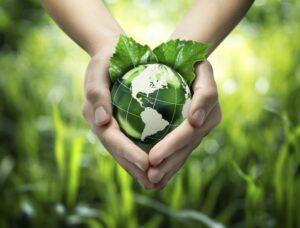 La sostenibilità che cos'è