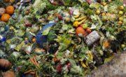 Lo spreco alimentare: diamo i numeri!