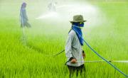 Agricoltura e Veleni: il glifosato
