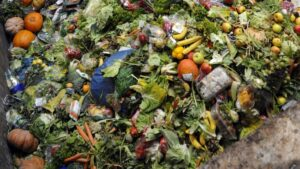 Food waste, a few numbers to reflect!