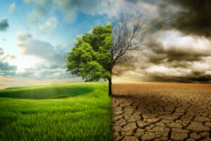 A little philosophy about why you need to become sustainable