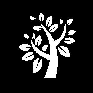 albero-400